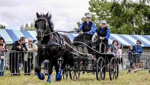 cheval et patrimoine