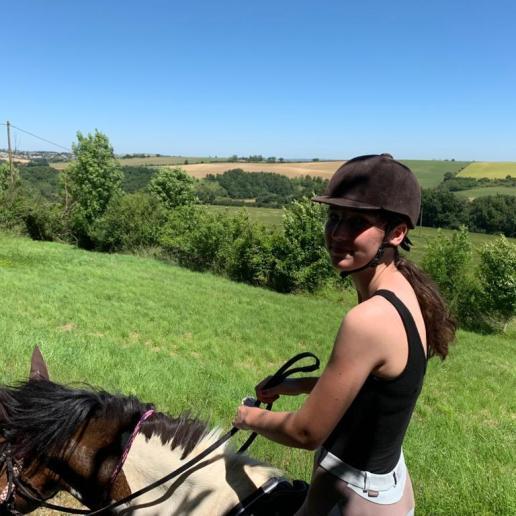 a cheval 2